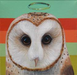 Barn Owl Halo