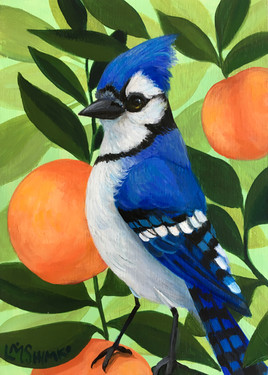 Blue Jay Peach I