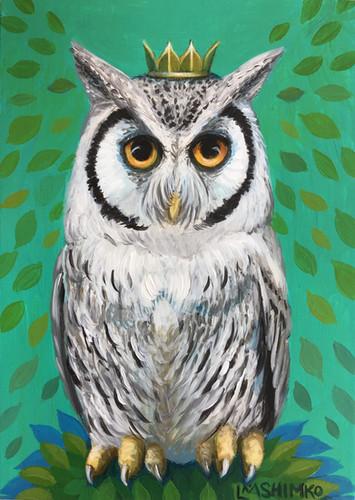 Royal Scops Owl