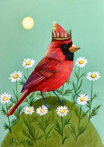 Cardinal Daisy Circle