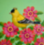 Royal Goldfinch.jpg