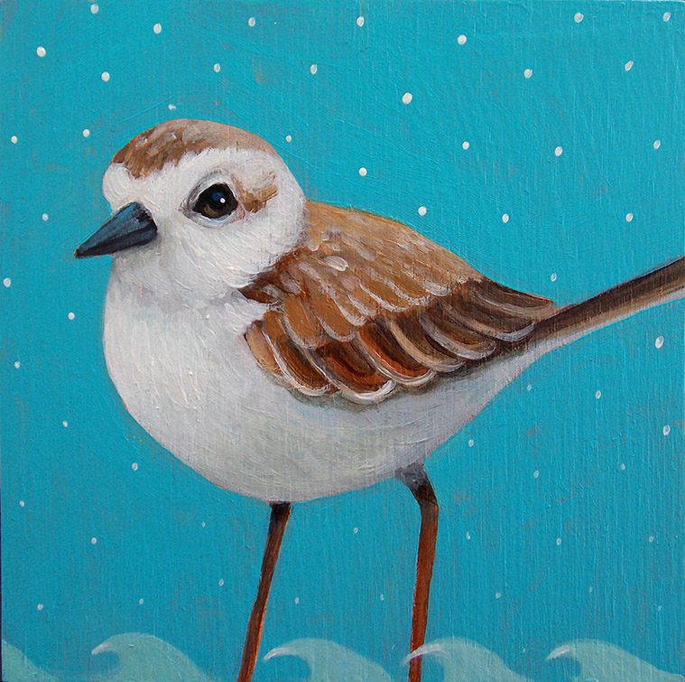 Snowflake Plover
