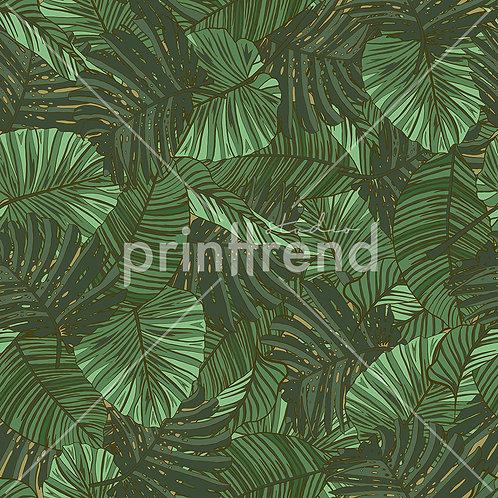 Jungle ferns - Exclusive PSD