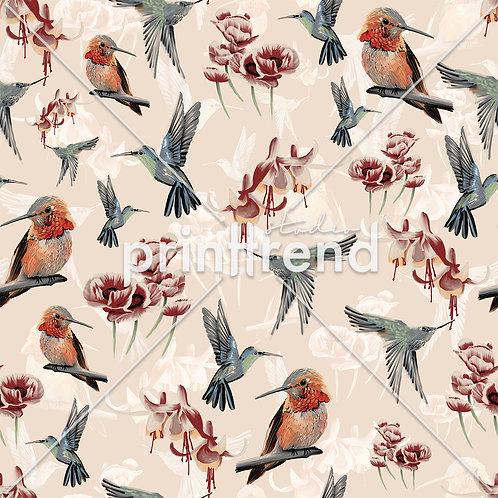 Birds with nude background - Standard JPEG