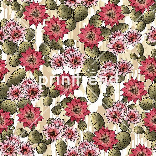 Cacti with florals - Standard JPEG