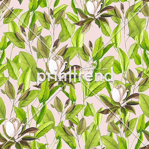 Pink roses with leaves - Exclusive PSD