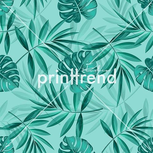 Sea tropical ferns - Standard JPEG