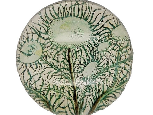 John Derian - Dome Paperweight - Moss Tree