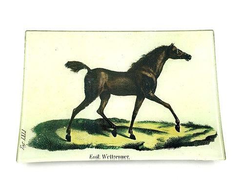 """John Derian - Horse Plate 6"""" x 9"""""""