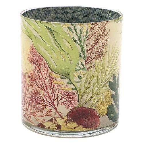 """John Derian - """"Sea Life"""" Desk Cup"""