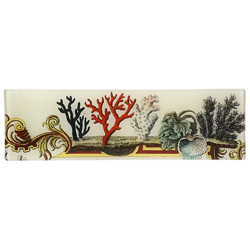"John Derian - Corals 3.5"" x 12"" Rectangular Tray"
