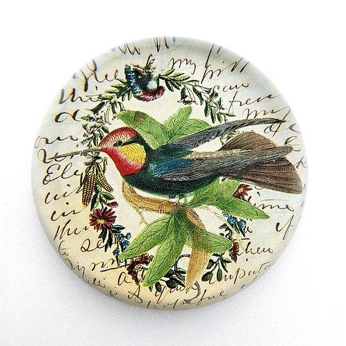 John Derian - Hummingbird Dome Paperweight