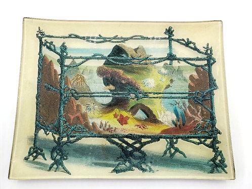 "John Derian - ""Rustic Aquarium"" 10"" x 8"" Plate"