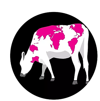 globelink koe cirkel.PNG