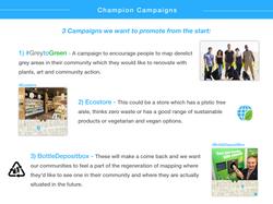 PP Slide 8.2 Campaigns