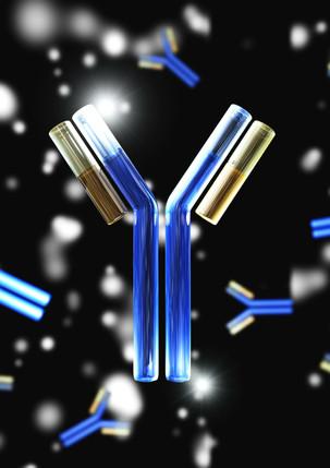 Step 4: Massive Antibody Response