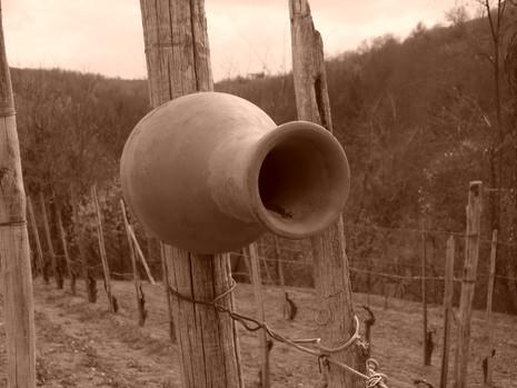 Terracotta-fuglehus i vinmarkene.