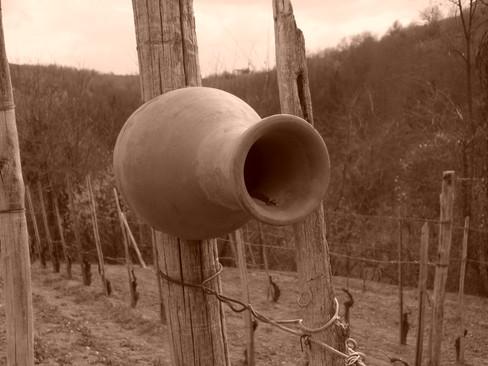 Terracotta-fuglehus i vinmarkene