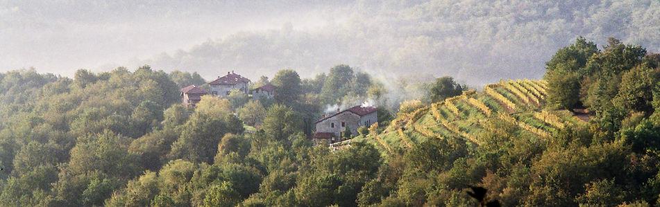 paesaggio con cascine da vicino_edited.jpg