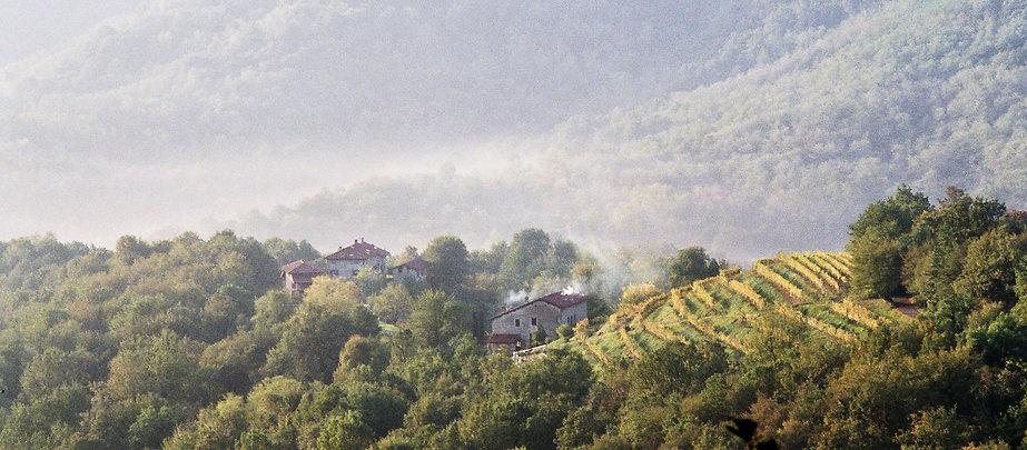 paesaggio con cascine da vicino.jpg