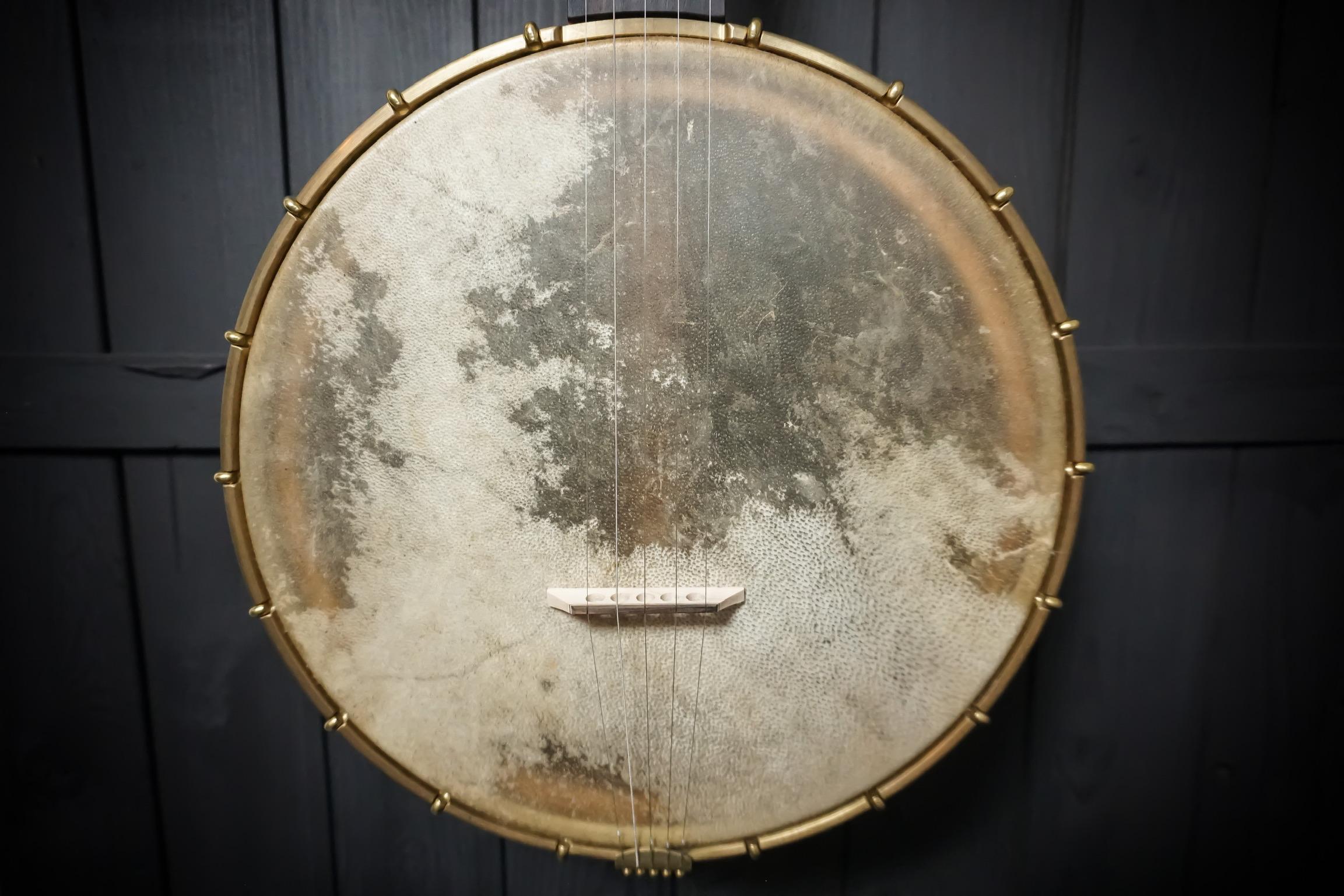 Moonshine Banjo Head
