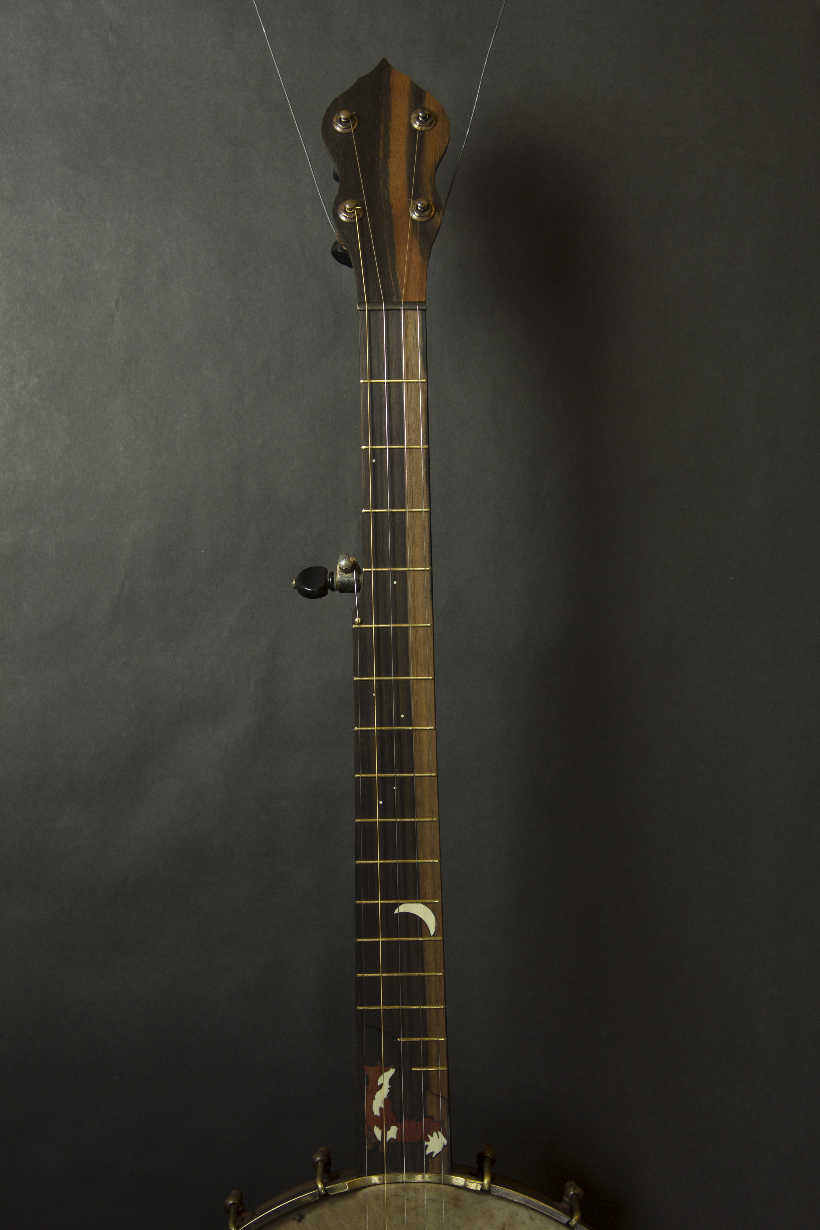 Fox Banjo 2 neck front full