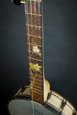 Leaves Banjo fretboard