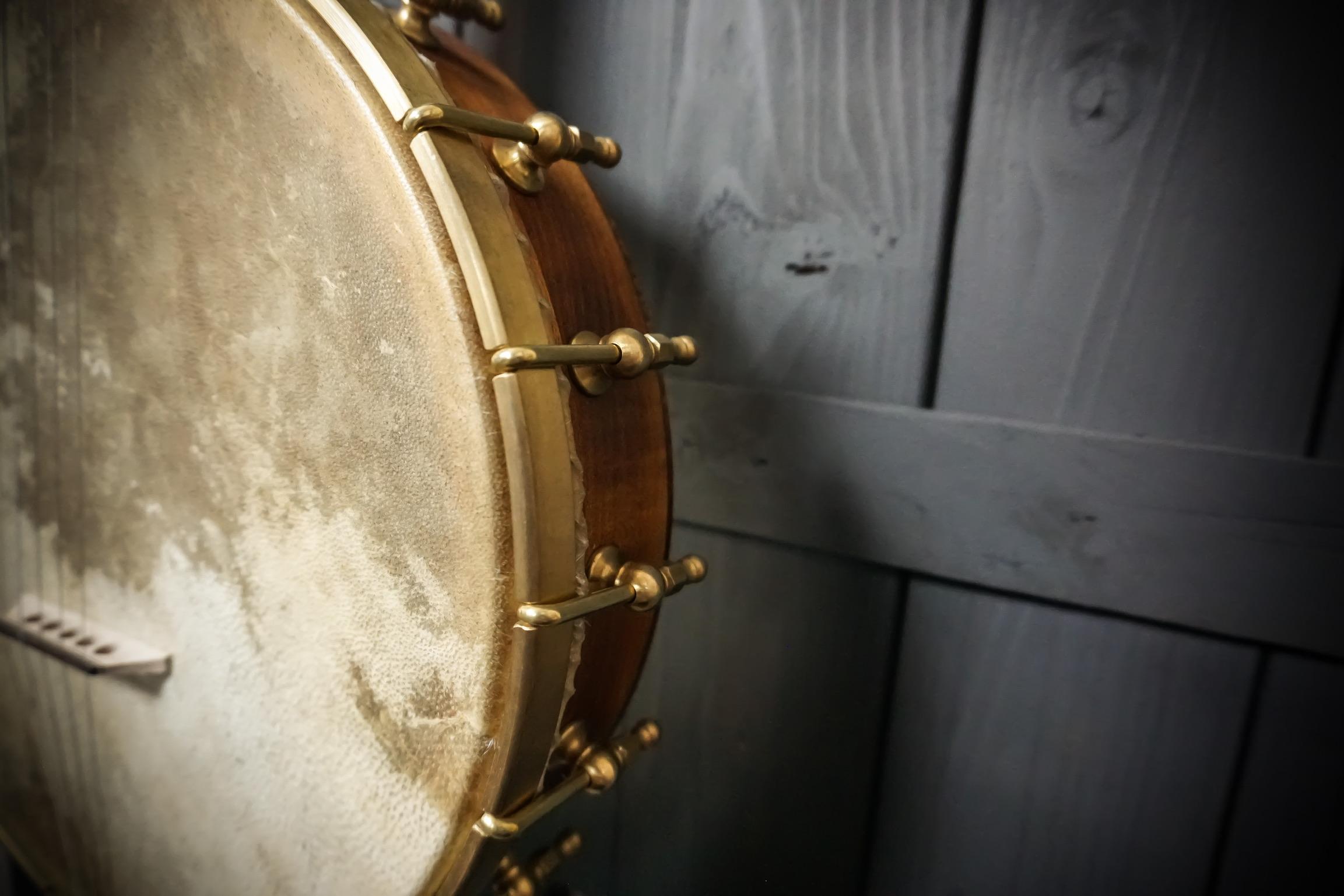 Moonshine Banjo shy