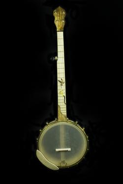 blackberry banjo #7