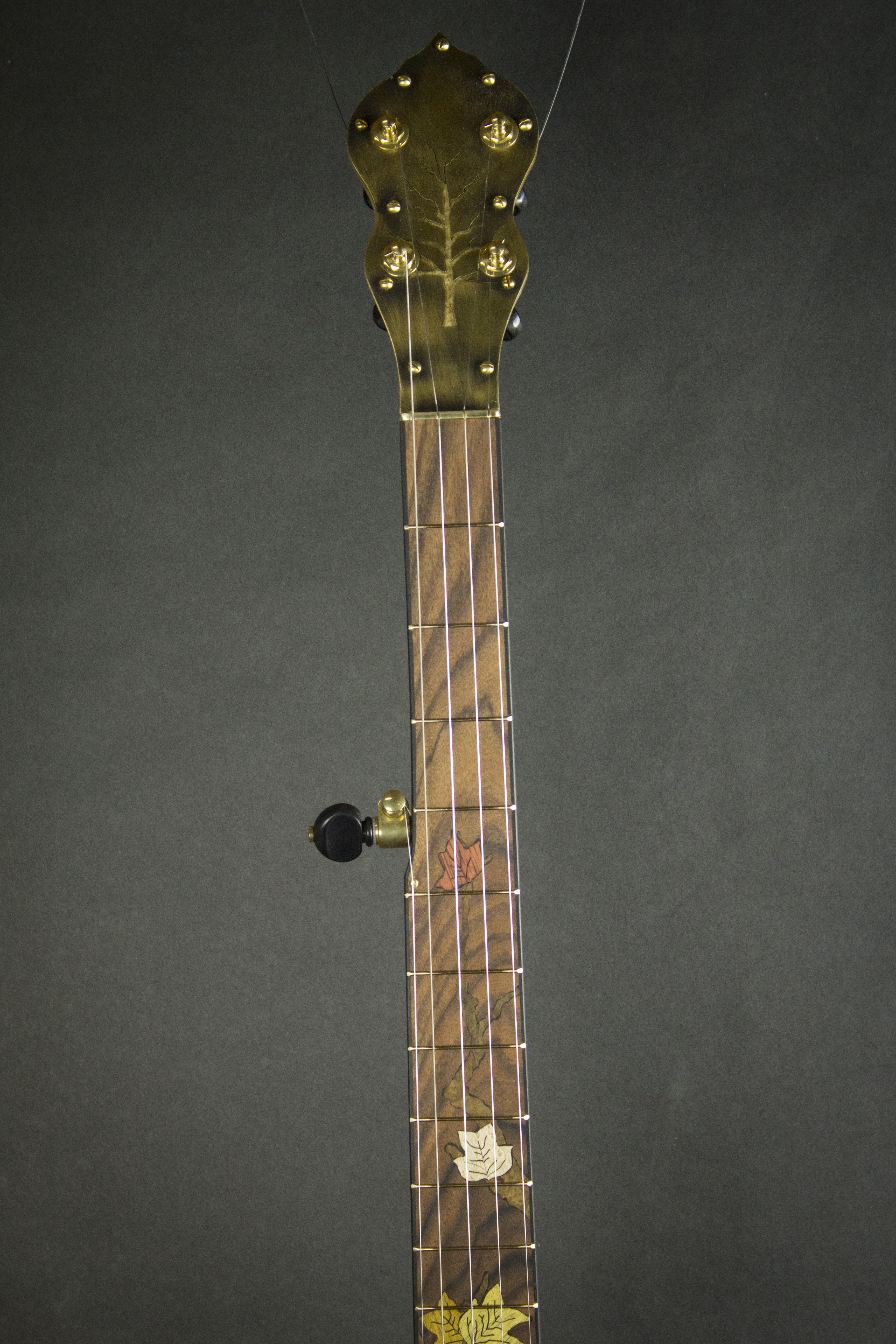 Leaves Banjo Neck Front