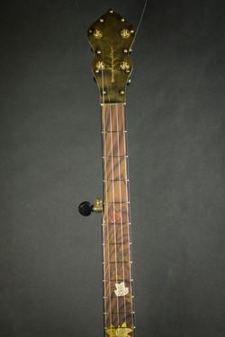 Leaves Banjo Neck Front