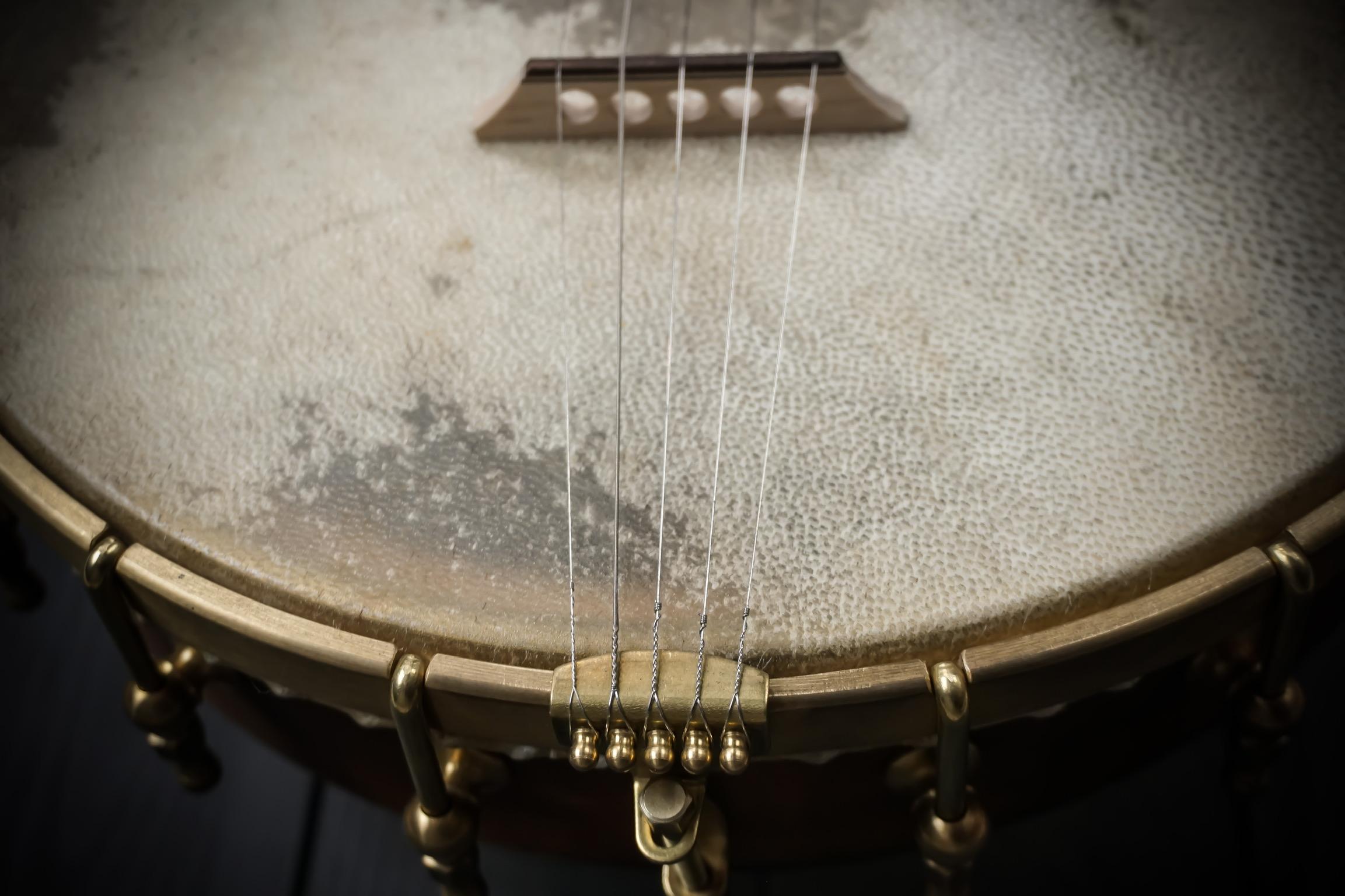 Moonshine Banjo Tailpiece