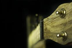 Blackberry Banjo #7 Detail 2