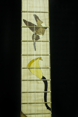 Blackberry Banjo #7 Bird and Flower