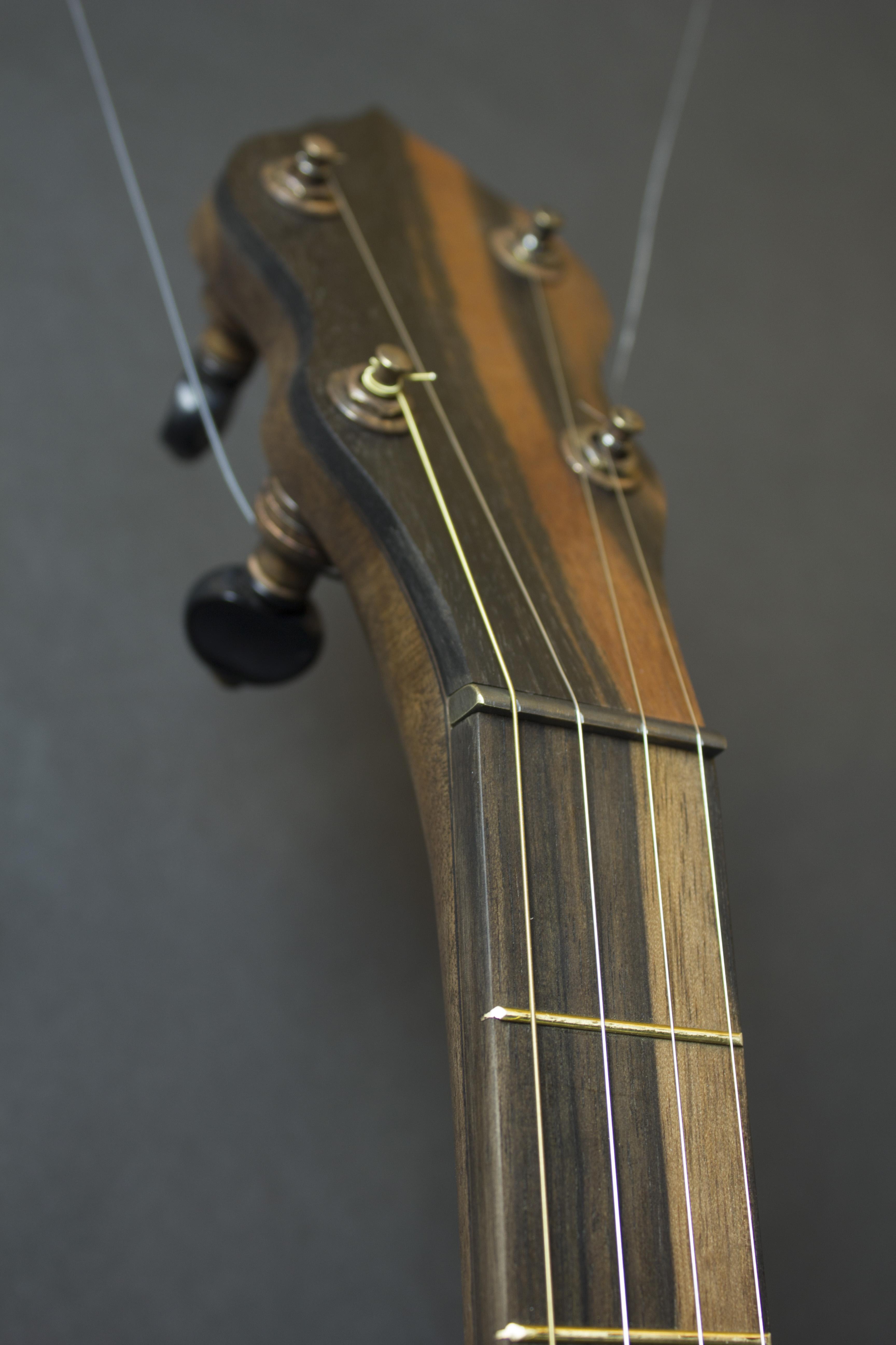 Fox Banjo 2 peghead detail