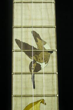 Blackberry Banjo #7 hummingbird