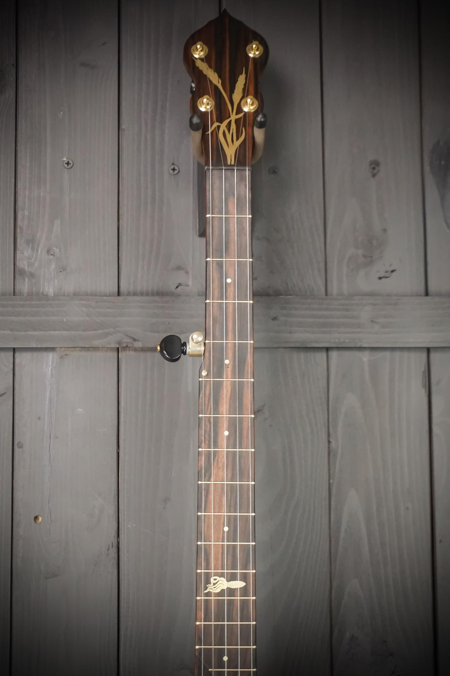 Moonshine Banjo Fretboard