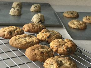 Giant Cranberry Oatmeal Cookie