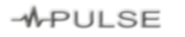 Pulse banner large no outer glow.png