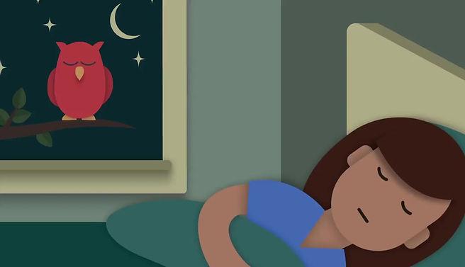 Sleep apnea and home sleep testing by telemedicine