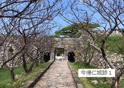 1今帰仁城跡1IMG_1812_edited.jpg