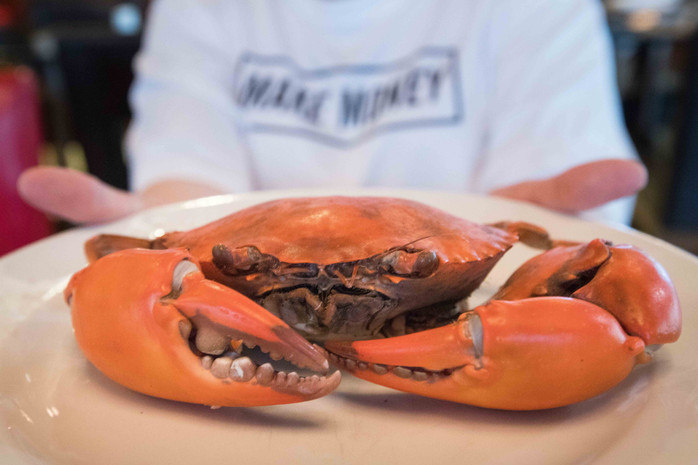 """""""Crazy about Crab"""" promotion at The Square, Novotel Bangkok on Siam Square"""