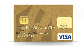 ELV VISA PHOTO -NO HOMETRUST LOGO.png