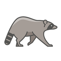 iconfinder_animal-wild-racoon_4664678.pn