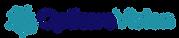 Opticare-Vision-Logo-1.png