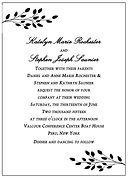 Katelyn & Steve Wedding Invitation Sampl