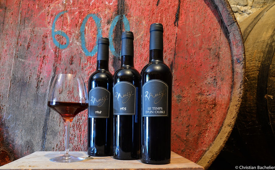 vins rancy 6 fil réduc 3.jpeg