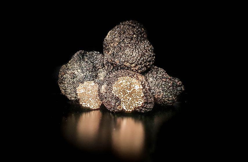 truffe-sologne-christophe hay.jpg