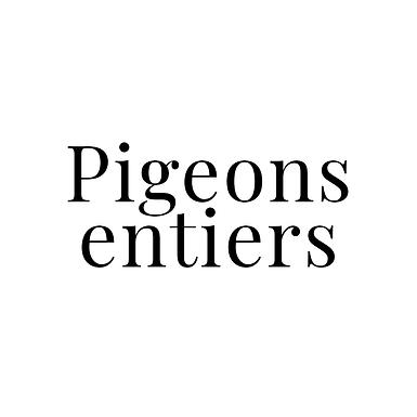 Pigeons entiers en lot de 4 - Pigeons Joel Poirier