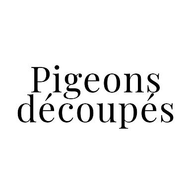 Pigeons découpés, lot de 4 sous-vides - Pigeons Joel Poirier